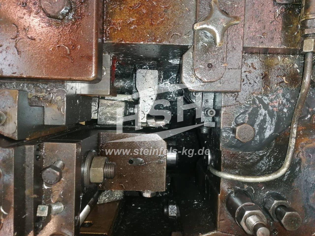 M06I/8433 – HILGELAND – CH3LA – 1981 – 5-10 mm