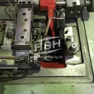 M06L/6061 – HILGELAND LIZ – CH00KHA – 1980 – 1-4 mm